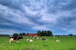 Jak rozwijają się obszary wiejskie?