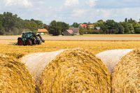Przesunięcie towaru z firmy do gospodarstwa rolnego w VAT