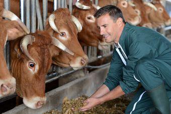Preferencyjne zasady podatku VAT dla rolnictwa