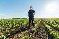 VAT w rolnictwie przy firmie: status rolnika ryczałtowego
