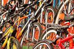 Najpopularniejsze rowery wg internautów