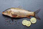 Jak kupować ryby na święta?