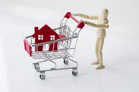 Ceny transakcyjne nieruchomości VIII 2015