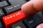 Rynek pracy specjalistów 2016