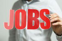 Rynek pracy specjalistów II 2017