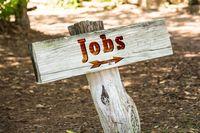 Co słychać na rynku pracy?