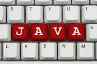 Java Developer na topie