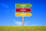 Monitor Rynku Pracy XII 2014