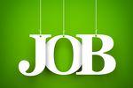 Rynek pracy: co przyniesie końcówka 2015 roku?