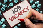 Rynek pracy, czyli niedobór talentów i wzrost wynagrodzeń