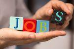 Rynek pracy specjalistów II 2015