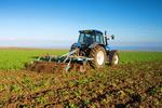 Ceny produktów rolnych IV 2018