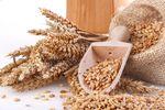 Ceny produktów rolnych IX 2014