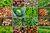 Ceny produktów rolnych X 2012