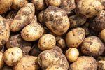 Ceny produktów rolnych XI 2019. Ziemniaki 93% droższe niż rok temu