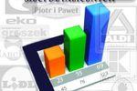 Marketingowy Ranking Sieci Detalicznych V 2012
