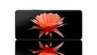 Sony Xperia 10 II - ekran
