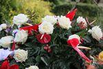 Odliczenie VAT: wieniec pogrzebowy tak, kwiaty na Dzień Kobiet nie