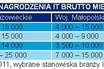 Kraków atrakcyjny dla specjalistów IT