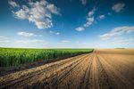 Obrót ziemią rolną w podatku dochodowym