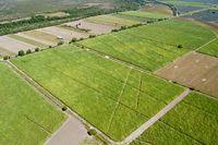 Zbycie gruntów rolnych wolne od podatu?