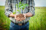 Sprzedaż (udziału) gospodarstwa rolnego bez podatku dochodowego