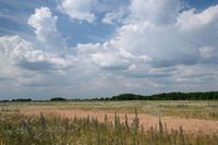 VAT od sprzedaży gruntu: ważne postępowanie zbywcy