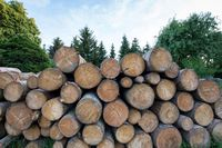 Stawka ryczałtu na sprzedaż drewna opałowego