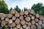 Handel drewnem opałowym na ryczałcie ewidencjonowanym