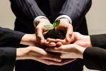 Strategia inwestycyjna z wykorzystaniem obligacji skarbowych