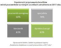 Popularność przyznawania benefitów wśród pracowników na różnych szczeblach zatrudnienia w 2017 roku