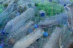 Recykling PET i jego znaczenie dla polskiej gospodarki