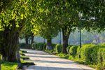 Tereny zielone w miastach: najwięcej w Warszawie