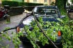 Lato 2012 - upały, burze i duże zniszczenia