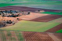 Ustawa o kształtowaniu ustroju rolnego: łatwiejsza sprzedaż i zakup ziemi
