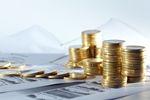 TFI: wartość aktywów netto X 2012
