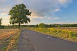 Warunki zabudowy: kiedy nasz teren ma odpowiedni dostęp do drogi publicznej? Cz.I