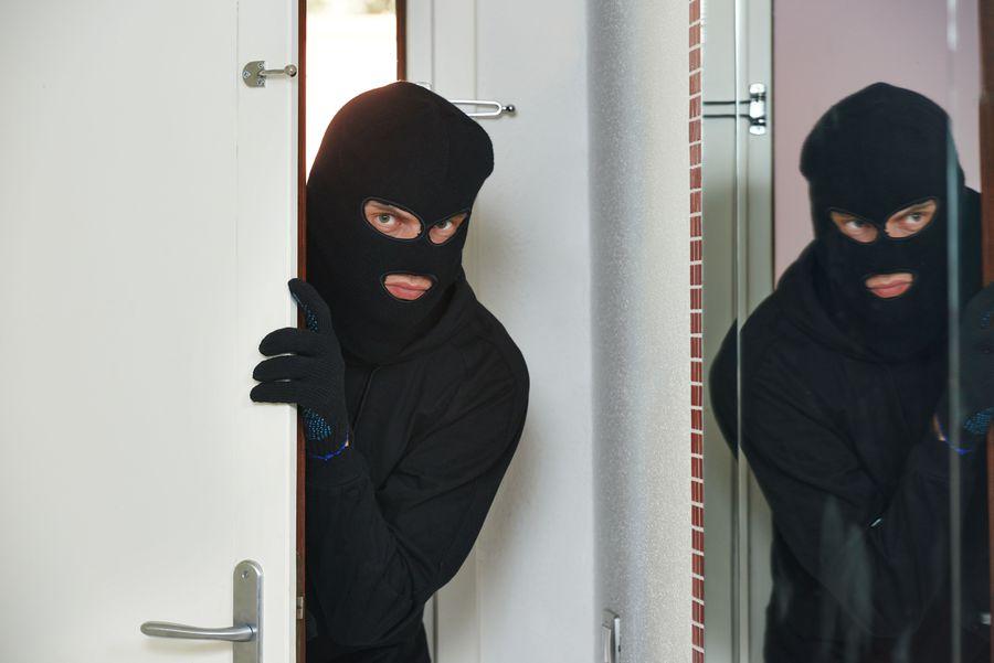 Znalezione obrazy dla zapytania wakacje i złodzieje