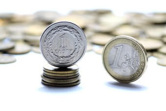 Wprowadzenie euro w Polsce a rynek nieruchomości