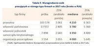 Wynagrodzenia osób pracujących w różnego typu firmach w 2017 roku (brutto w PLN)
