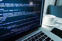 Ile zarabiała programistka w 2015 roku?