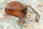 Usługi dla biznesu: wynagrodzenia 2013