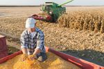 Polski rolnik, czyli dobre zbiory i coraz wyższe długi
