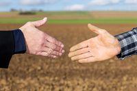 Na co uważać kupując ziemię?