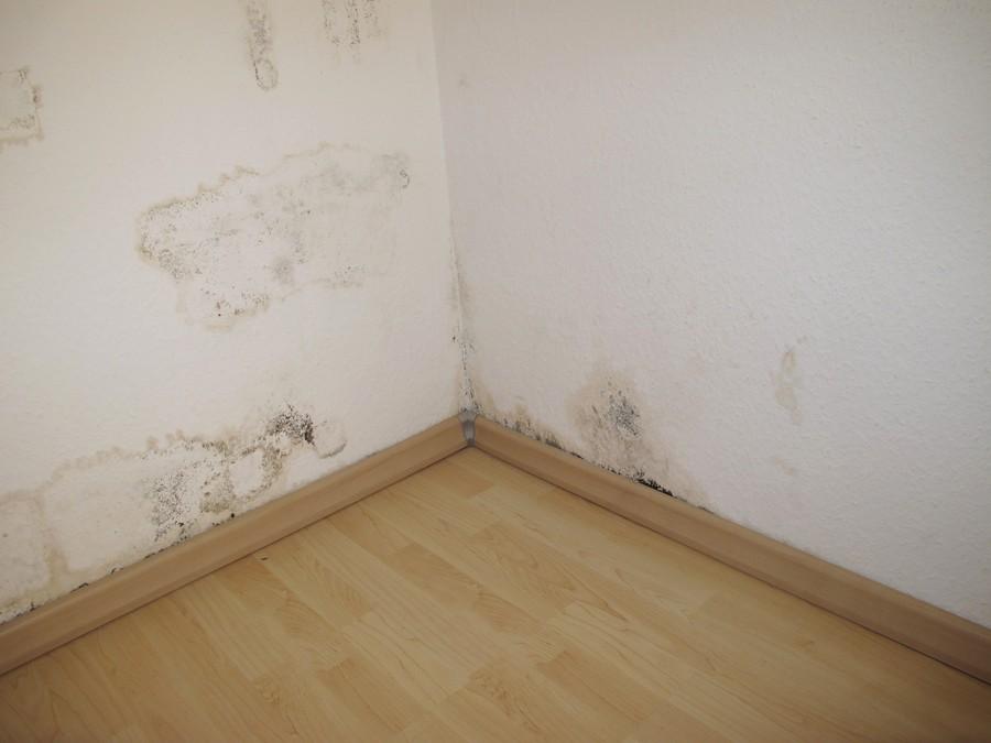 odpowiedzialno lokatora za zalanie innego mieszkania porady. Black Bedroom Furniture Sets. Home Design Ideas
