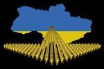 Czy pracownicy z Ukrainy cenią pracę w Polsce?