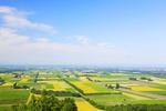 Obrót ziemią rolną: niemiecki rolnik może kupić polski grunt