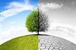 Zmiana klimatu: przeciwdziałać globalnie czy lokalnie?