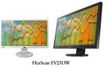 Monitor EIZO FlexScan EV2333W