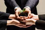 Specjalne Strefy Ekonomiczne: inwestycje z mniejszym wsparciem